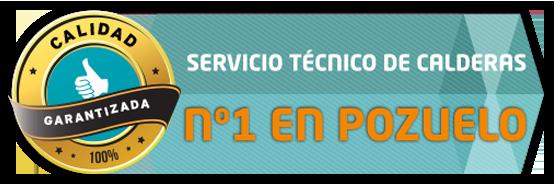 Servicio tecnico de reparacion de calderas en Pozuelo número uno