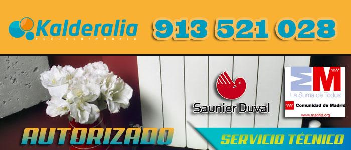 Caldera sime fallo f10 hydraulic actuators for Caldera saunier duval problemas