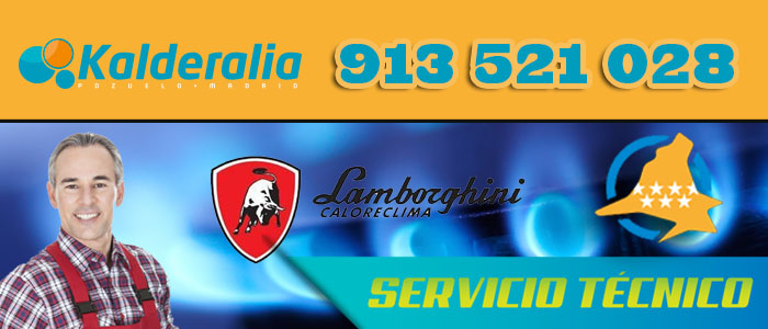 Calderas de gas Lamborghini